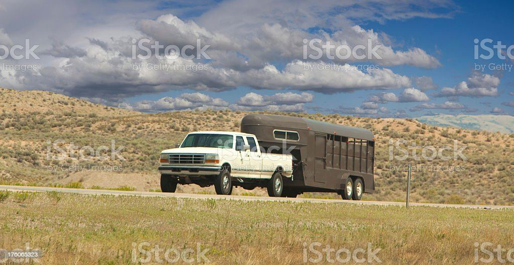 Horse road trip royalty-free stock photo