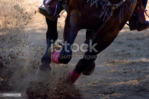 A horse kicks up dirt while at a full gallop in a close-up image focusing on the hooves.