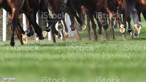 Horse running picture id109719409?b=1&k=6&m=109719409&s=612x612&h=kpxod9ixwgve6rpgjtw4tpxdqhjcj7lqp5erohsuy k=