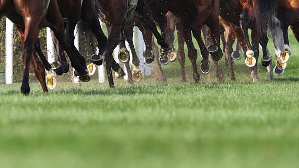 Horse running picture id109719409?b=1&k=6&m=109719409&s=612x612&w=0&h=3ks0xjw0knleos5aizrfivnswgv2nekztsnybqvopvm=