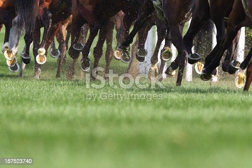 istock Horse Running 157523740