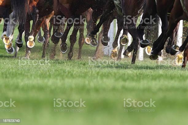 Horse running picture id157523740?b=1&k=6&m=157523740&s=612x612&h=eohk39ztjv1dtqfeaakxby8mbairzslaz4cby18hnq4=