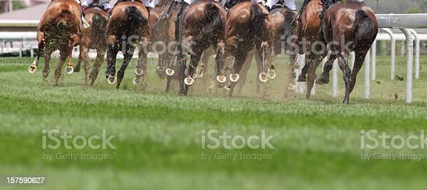 Horse running picture id157590627?b=1&k=6&m=157590627&s=612x612&h=l n8 e7fano f uy 0ccowb34juq8pv1w2rabhjdalc=