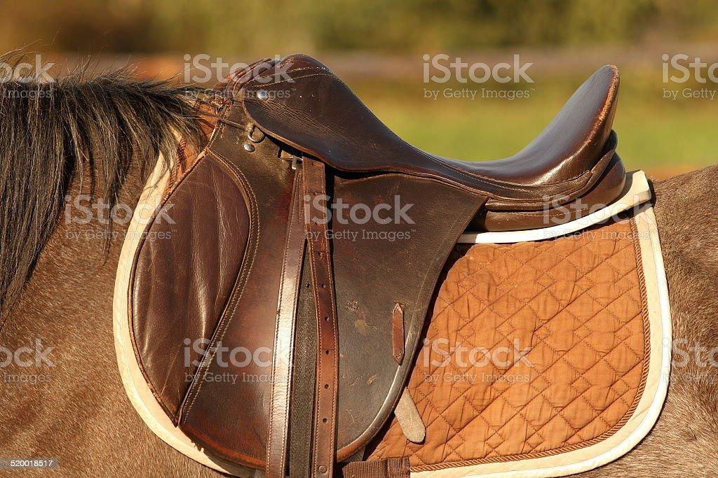horse saddle stock photo