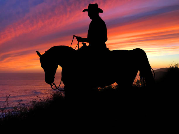 A Girl With A Wild West Stock Images - Image: 32575494