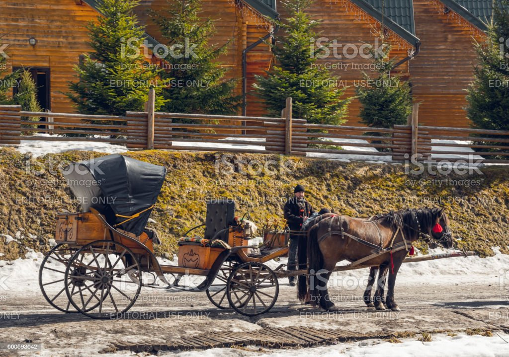 Horse sleigh on the background of wooden modern tourist cottages. Entertainment horseback riding for tourists royalty-free stock photo