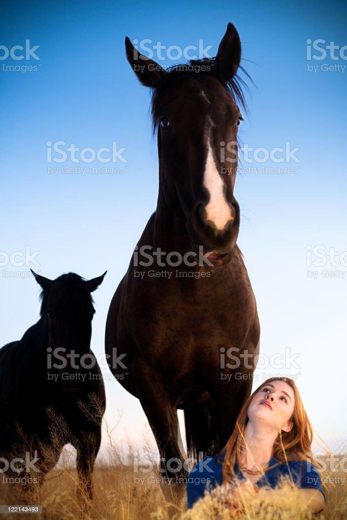 Horse Standing Over Girl stock photo