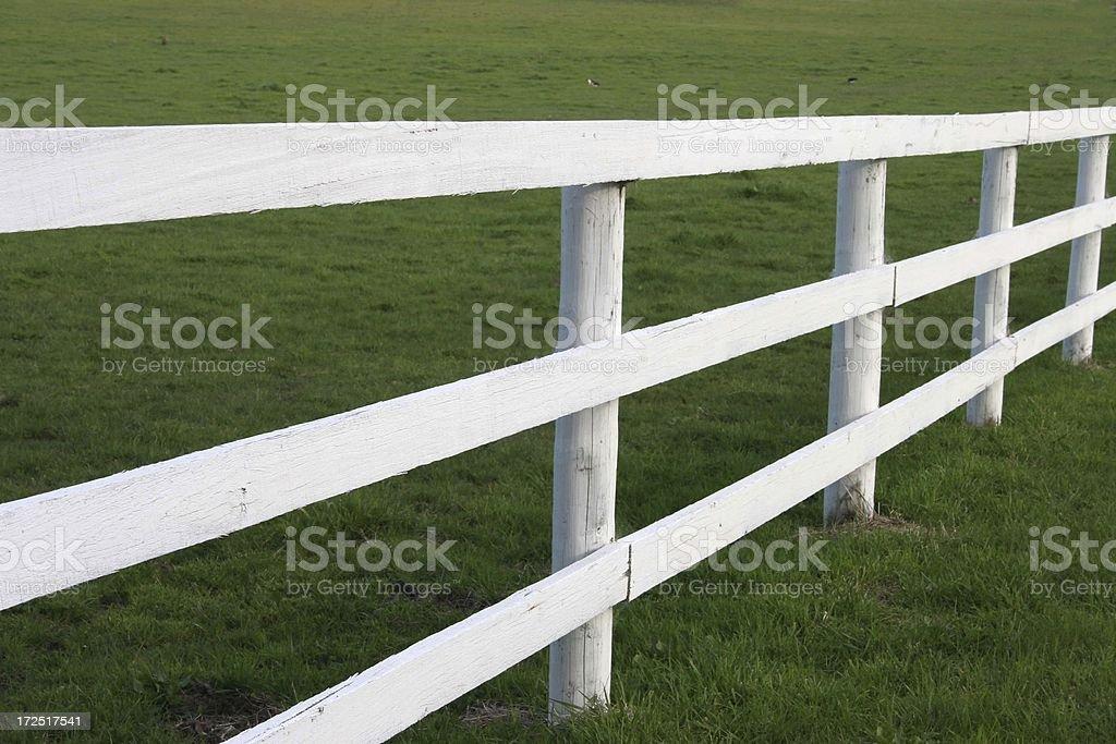 Horse stud farm fence royalty-free stock photo
