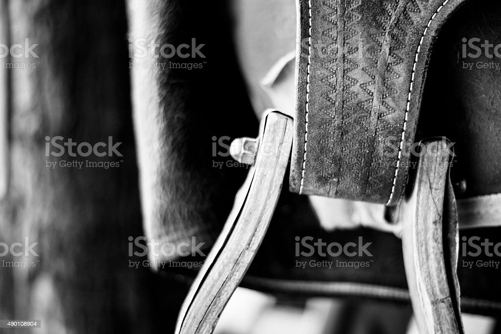 Horse Tack Close Up stock photo
