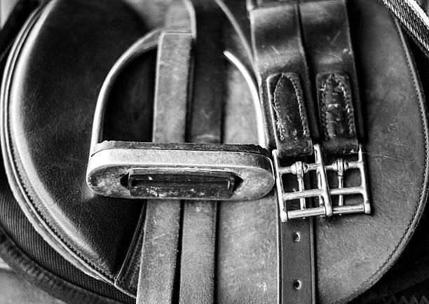 Horse Tack Close Up stock photo