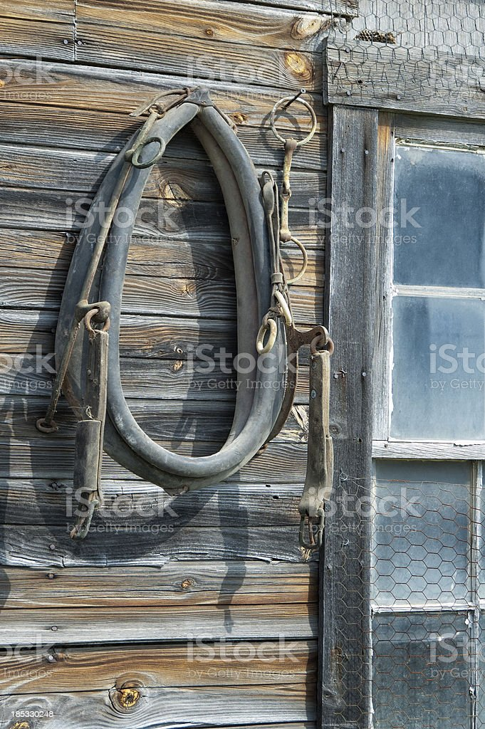 Horse Tack Hanging On Rustic Weathered Barn, Old Collar stock photo