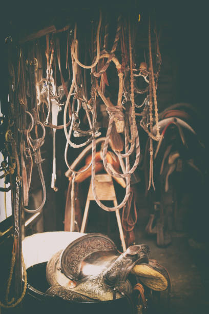 horse tack - reins, bridles, ropes and saddles - horse bit stock pictures, royalty-free photos & images