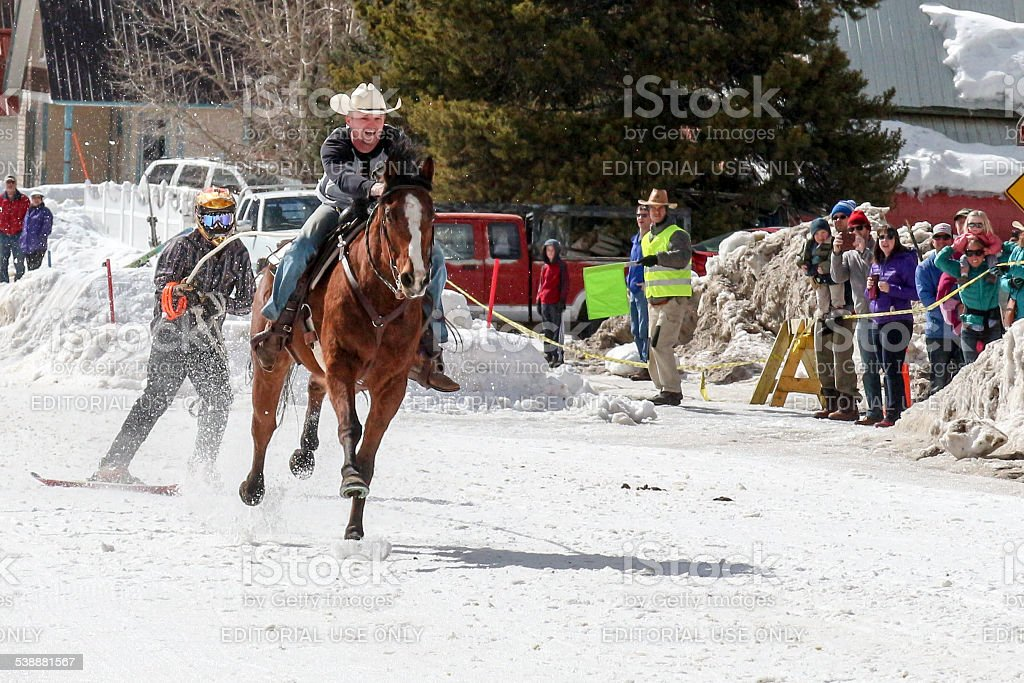 Horse towing a skier in a skijoring competition stock photo
