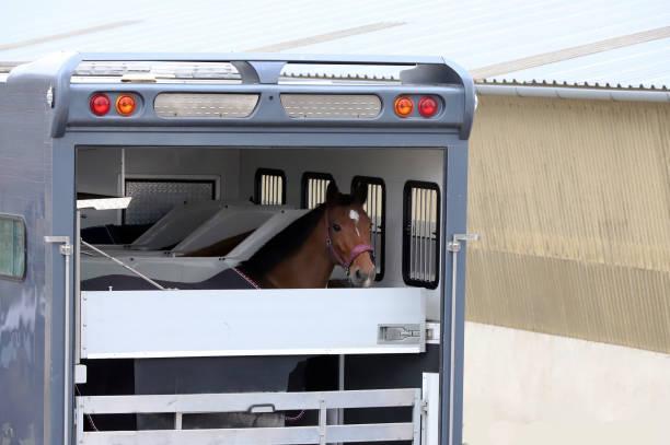 pferdeanhänger geparkt in der nähe von rennstrecke - pickup trucks stock-fotos und bilder