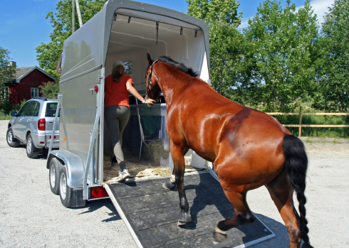 Horse transport, Norway