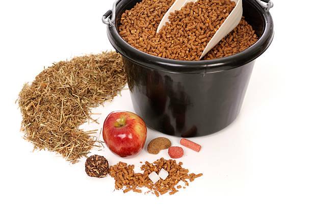 Horse Treats, Hay And Grain stock photo