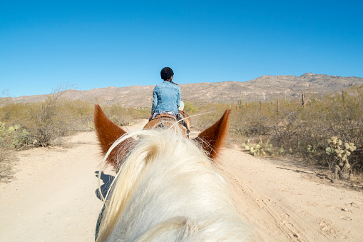 This picture shows the rear view of a woman riding on a horse on a trail in the Arizona Desert near Saguaro National Park near Tucson, Arizona.  This shot was taken from an angle that shows a horse's head's perspective.  The woman is following a line of other riders.  Surrounding the trail are cactus and other brush in the arid landscape.