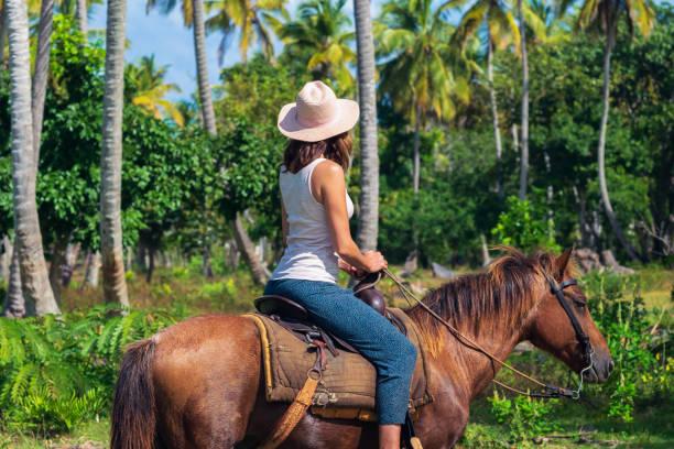 Horseback ride through jungle stock photo