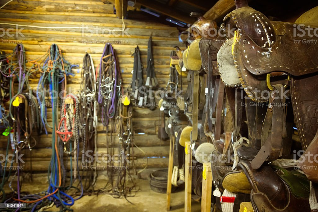 Horseback riding equipment stock photo