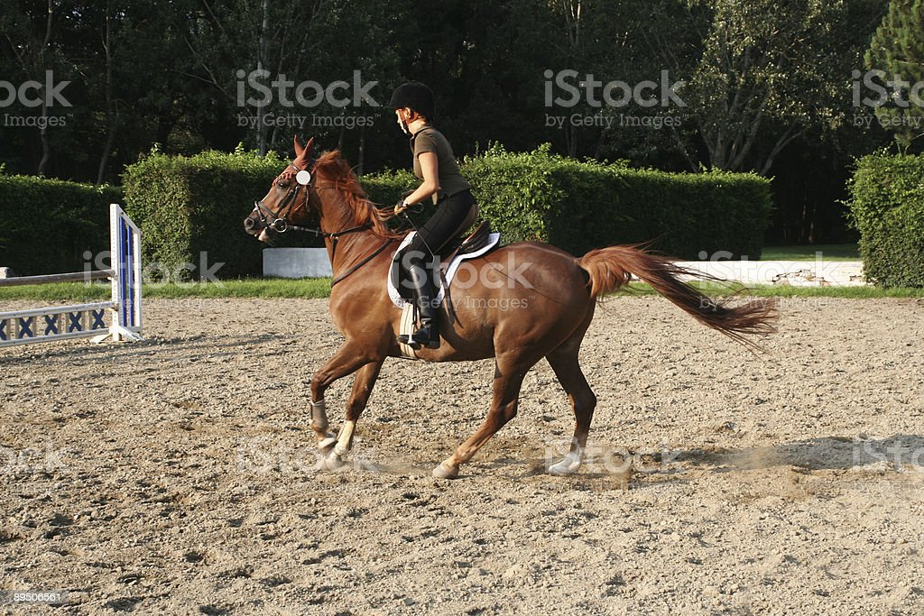 Horseback riding, girl cantering fast... royalty-free stock photo