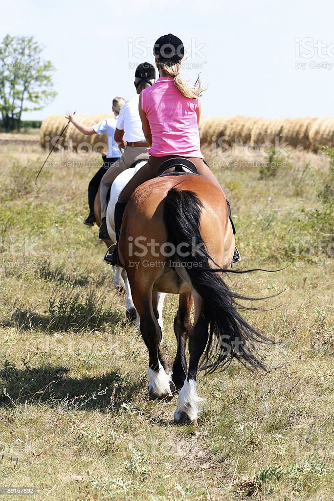 Horseback Riding Group In Indian File Stock Photo Download Image Now Istock