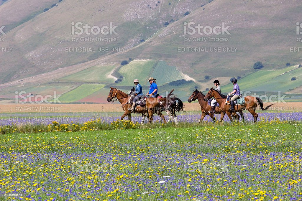 Horseback Riding in the Countryside - Landscape stock photo