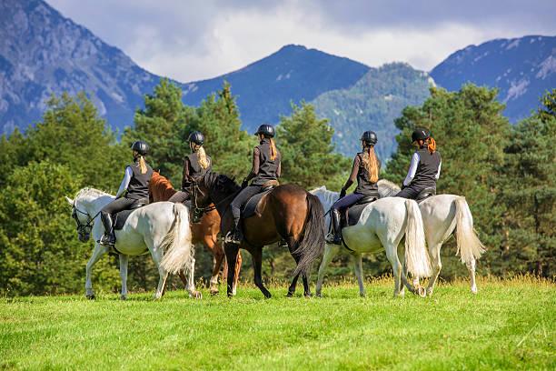 paseos a caballo en el campo - equitación fotografías e imágenes de stock
