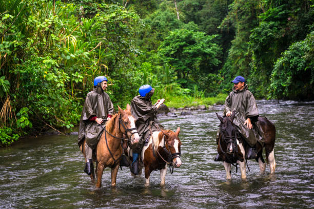 Horseback riding on foot of  Volcano Arenal, Costa Rica. stock photo