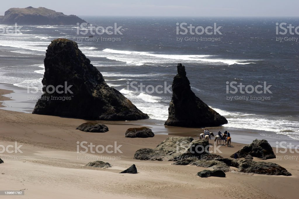 Horseback riding on the beach stock photo