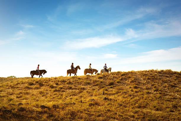 乗馬 - 乗馬 ストックフォトと画像
