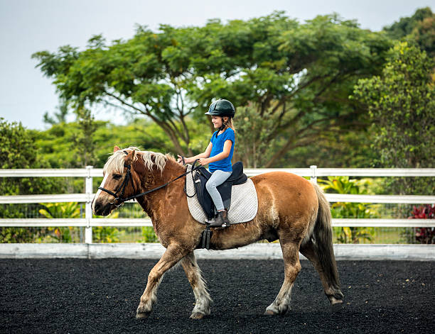 Horseback Riding A happy young girl riding a pony pony stock pictures, royalty-free photos & images