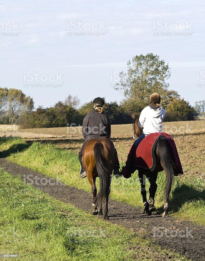 Horseback riding. royalty-free stock photo