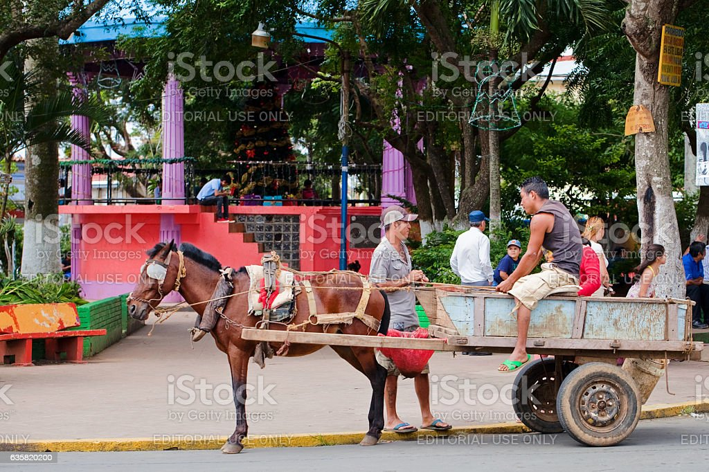 Horsecart in Nicaragua stock photo