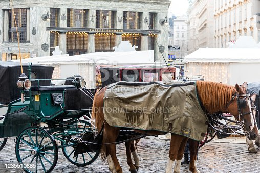 Horse-Drawn Carriage for touristic attraction in the old town of Vienna, Austria at a rainy day.