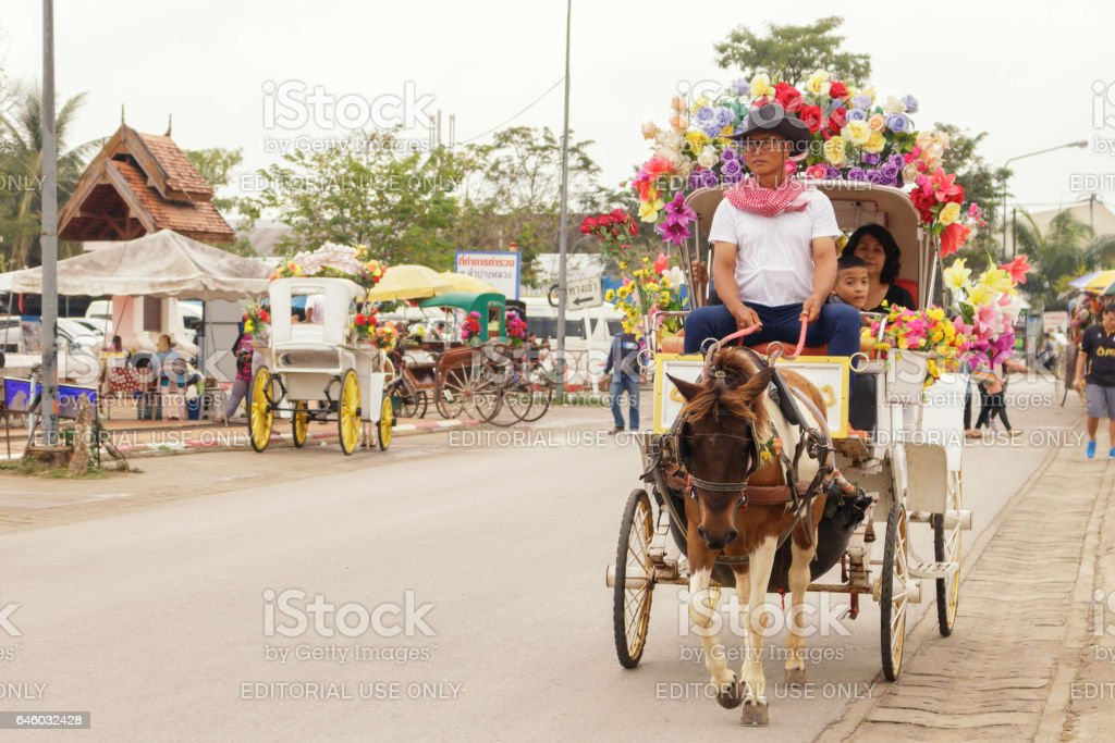 Horse-drawn carriage is a vehicle vintage. stock photo