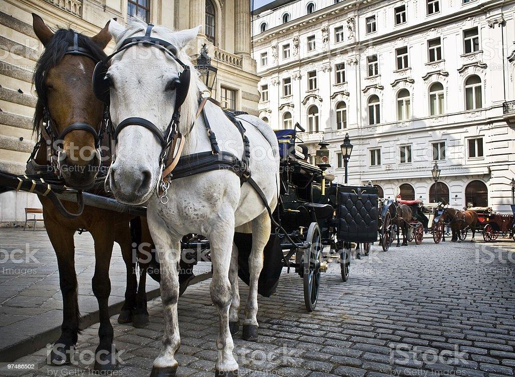 Horse-driven carriage at Hofburg palace, Vienna royalty-free stock photo