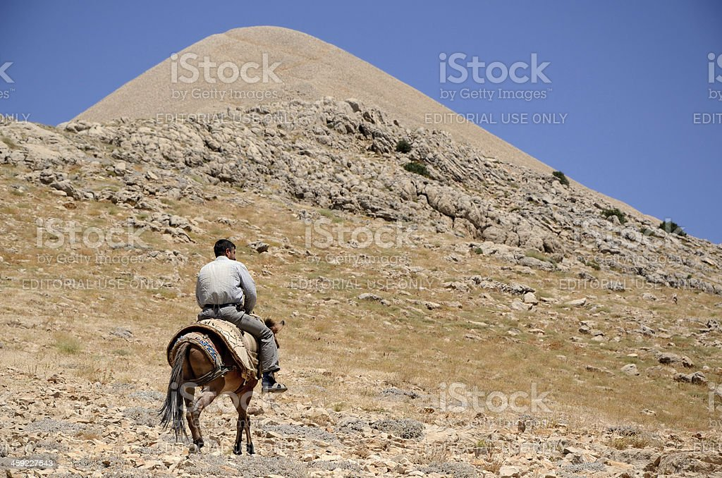 Horseman royalty-free stock photo