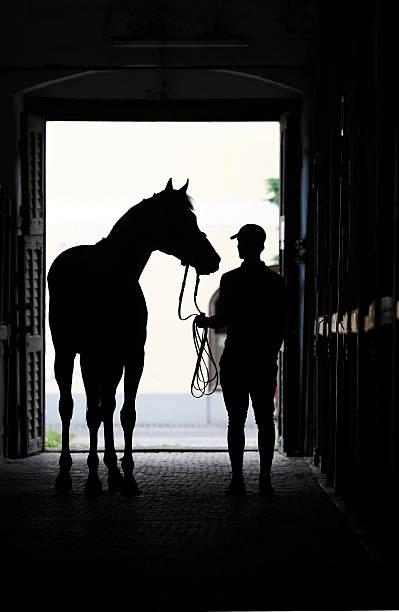 Horseman with his horse picture id155360800?b=1&k=6&m=155360800&s=612x612&w=0&h=p8tklkjuji919za3kohcqmkpa4vw1bsdl7pqe9i1lwe=