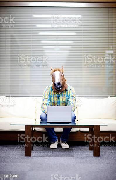Horseman with laptop picture id163190394?b=1&k=6&m=163190394&s=612x612&h=zwsegbnd e60en l4fwhcwqgenhrdlxlvtjjmrwy47w=