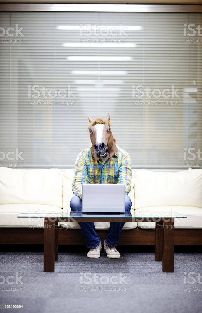 Horseman with laptop stock photo