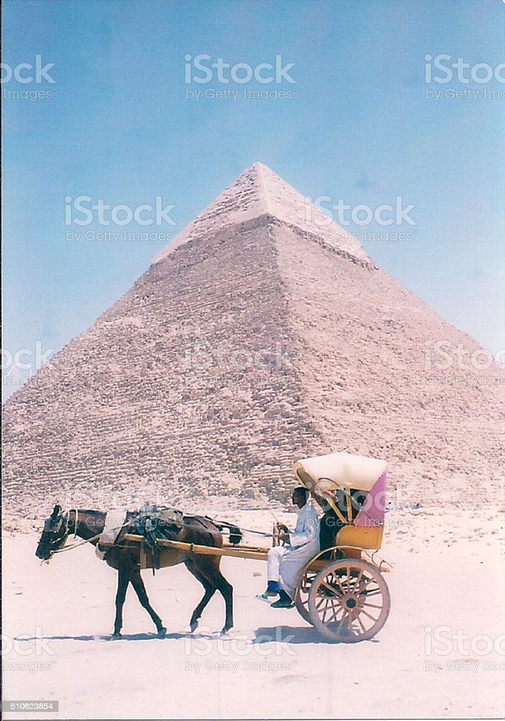 Horse-Pulled Carriage at Giza Pyramids stock photo