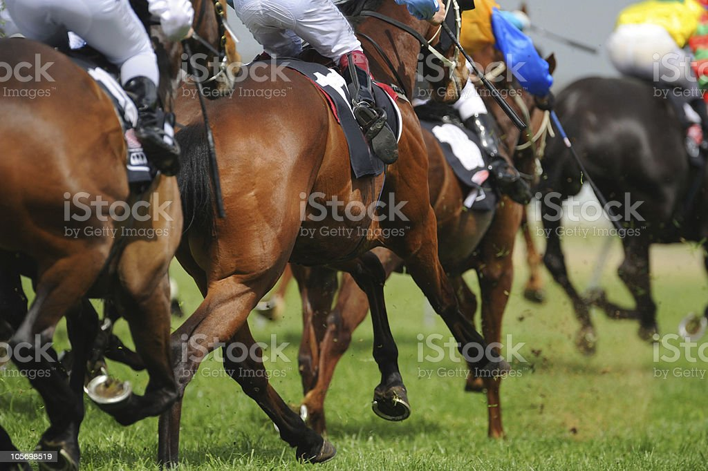 Horseracing royalty-free stock photo