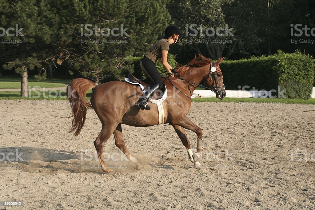 Horseriding girl cantering... royalty-free stock photo