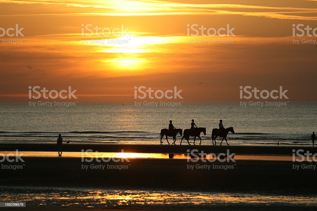 Horseriding in the sunset stock photo