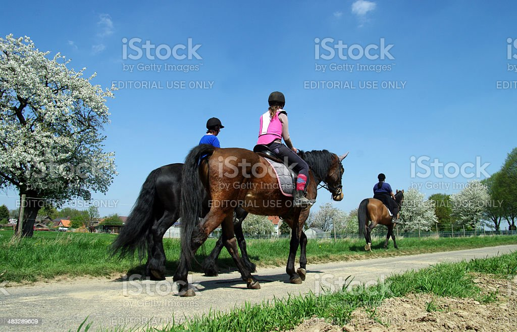Horse-riding om a day in May stock photo