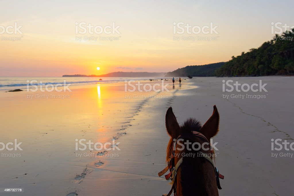 Horseriding on a Sumba beach at sunset. stock photo