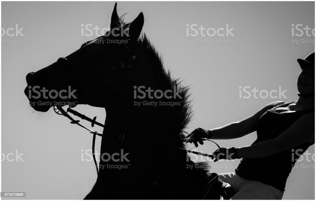 Horseriding royalty-free stock photo