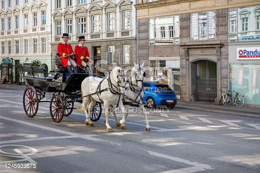 Downtown Copenhagen, Denmark, May 29, 2020: Horses and carriage in a street in Copenhagen, the horses coming from the Royal Staples and are practicing getting used to traffic