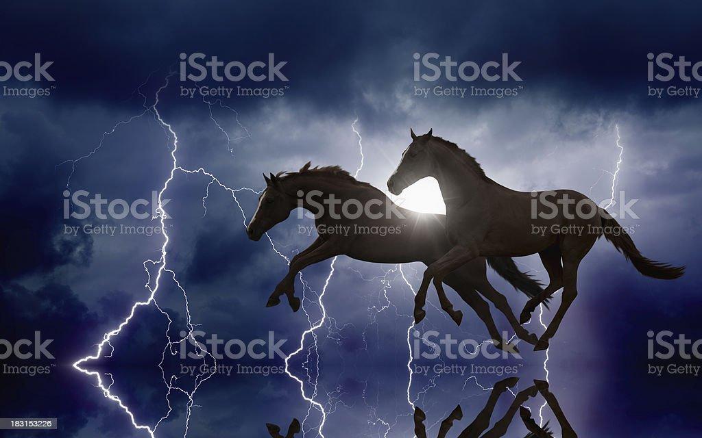 Horses and lightnings royalty-free stock photo