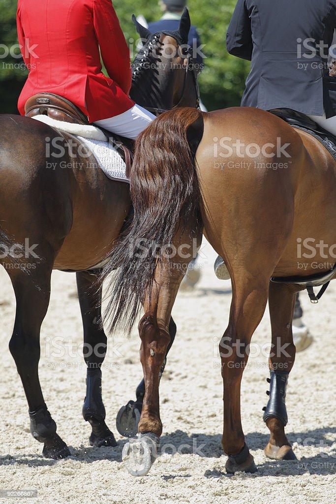 Horses and raiders royalty-free stock photo